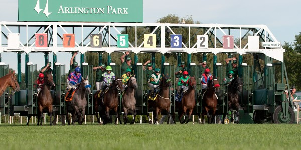 Turf eye view of a race start.